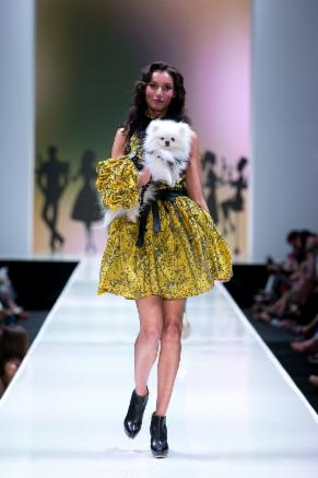 Dog Fashion Show Rochester Ny